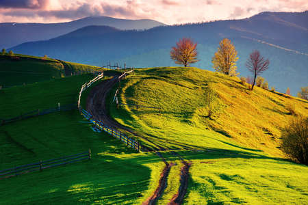 path winding through rural field on hill. wooden fence and trees along the way. fluffy clouds above the distant ridge in evening. wonderful countryside landscape in spring at sunset