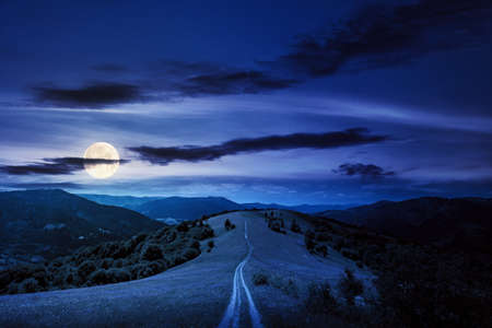 road through meadow in mountains at night. beautiful rural landscape of carpathians in full moon light. wonderful summer weather with fluffy clouds on the sky Stock Photo