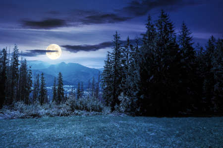 rural landscape in tatra mountains at night. spruce trees on the  grassy meadow. beautiful nature scenery in full moon light. clouds above the distant ridge
