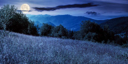rural field in mountains at night. beautiful summer landscape of carpathian countryside in full moon light. trees on the hill, forested ridge in the distance beneath a blue sky with clouds.