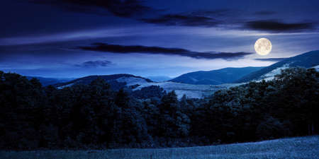 summer landscape of carpathian mountains at night. beautiful scenery in full moon light. beech forest and grassy alpine meadows on the hills. clouds on the dramatic sky