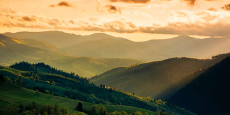 mountainous countryside scenery at sunset. dramatic sky above the distant valley. green fields and trees on the hill. beautiful nature scenery of carpathians Stock Photo