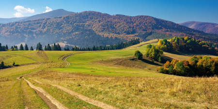mountainous countryside in autumn. rural road through grassy pastures on hills rolling in to the distance. forest in colorful foliage. bright sunny day with bright blue sky Stock Photo