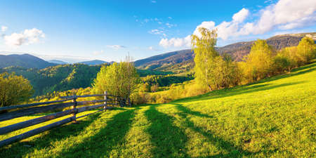 trees behind the fence on the grassy meadow. spring rural landscape in evening light. distant mountain ridge beneath a bright sky with fluffy clouds