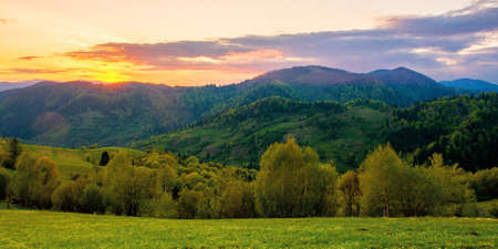 rolling rural mountain landscape at dusk. gorgeous nature scenery in spring. clouds on the sky in evening light