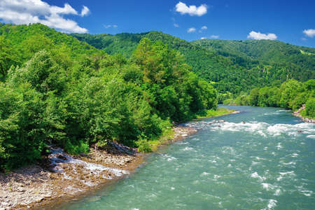 mountain river scenery on a sunny day. beautiful views of carpathian nature landscape in fine summer weather with blue sky and fluffy clouds Stock Photo