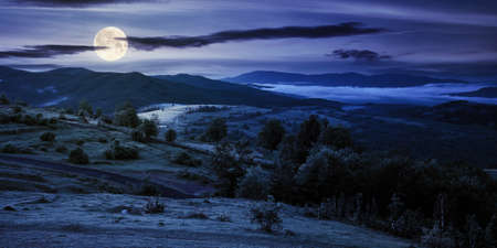 mountainous countryside landscape at night. trees and agricultural fields on hills rolling in to the distant misty valley. ridge beneath a sky in full moon light