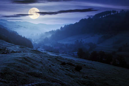valley on the foggy night. village in the distance. grass and flowers on the hill in full moon light. beautiful countryside scenery. dark clouds on the sky Stock Photo