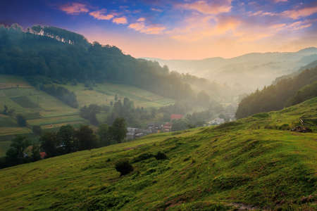 valley on the misty morning. village in the distance. grass and flowers on the hill in morning light. beautiful countryside scenery. red clouds on the sky