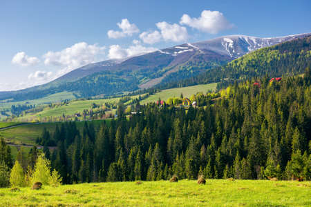 countryside landscape of carpathian mountains. wonderful nature scenery in spring time. fluffy clouds on the sky. village in the distant valley Stock Photo