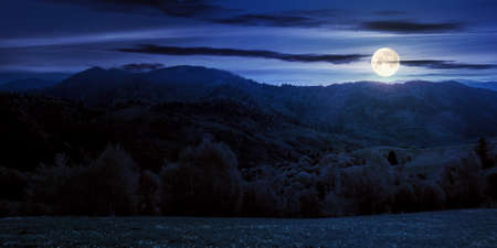 rolling rural mountain landscape at night. gorgeous nature scenery in spring. clouds on the sky in full moon light