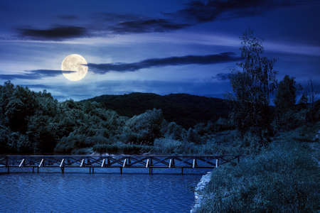 mountain scenery with lake in spring at night. wonderful rural landscape with deciduous trees on the shore in full moon light. clouds on the sky