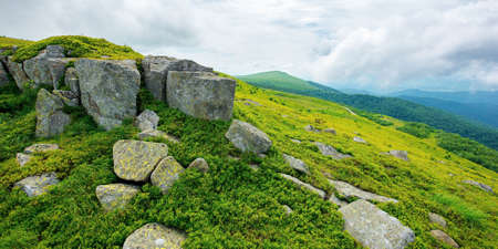 alpine mountain scenery in summer. cloudy weather. stones and boulders on grassy hills and meadows. beautiful view in to the distance Stock Photo