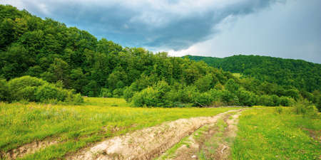 dirt road through forested countryside. beautiful summer rural landscape in mountains. adventure in nature scenery before the storm