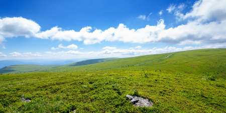 meadow on the mountain plateau. beautiful summer landscape on a sunny day. clouds on the sky above the distant ridge Stock Photo