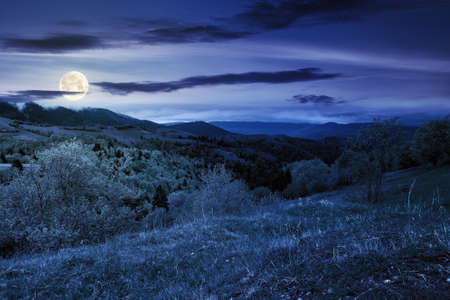 rural mountain landscape in spring at night. grass and trees on hills rolling through the green valley in to the distant ridge beneath a cloudy sky in full moon light