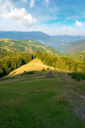 carpathian mountain rural landscape in the morning. forested hills with grassy meadow rolling down in to the valley. ridge in the distance beneath a blue sky with clouds