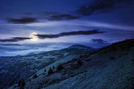 hills of the petros mountain in summer at night. wonderful nature scenery of carpathians in full moon light