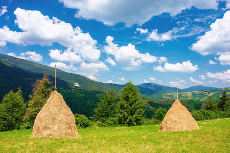 rural landscape with haystack on the grassy meadow. wonderful mountain scenery on a sunny day in summertime. fluffy clouds on the blue sky