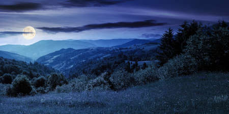 countryside landscape in summer at night. beautiful nature scenery with meadows on the hills rolling in to the distant valley in full moon light