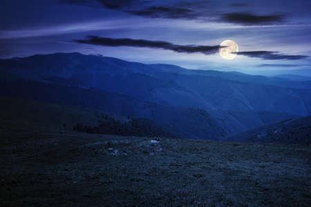 alpine mountain meadow in summer at night. beautiful landscape of carpathians in full moon light Stock Photo