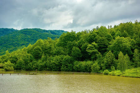 mountain scenery with lake in spring. wonderful rural landscape with deciduous trees on the shore. clouds on the sky Stock Photo