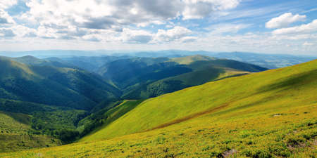 grassy hills and meadows of borzhava mountain ridge. beautiful landscape in summer on a sunny day with clouds on the sky