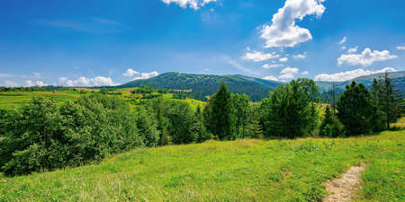countryside summer landscape on a sunny day. grassy fields and forested hills at the foot of mountain ridge beneath a blue sky with fluffy clouds Stock Photo