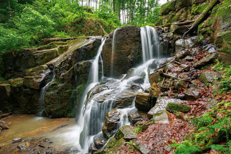 nature scenery with waterfall in spring. powerful water flow in the beech forest Stock Photo