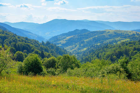 countryside landscape in summer. beautiful nature scenery with meadows on the hills rolling in to the distant valley. wonderful sunny weather