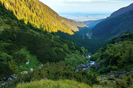 alpine balea stream in mountains. water flows among the stones and trees. beautiful summer landscape in the morning. view in to the distant valley of fagaras ridge Stock Photo