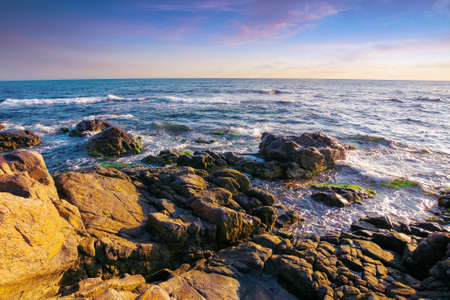 stones on the sea shore in the morning. beautiful summer seascape in purple light. few clouds on the bright blue sky Stock Photo