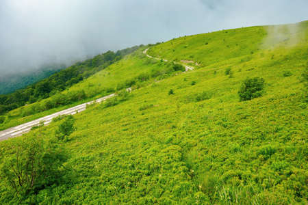 road through mountain hills. beautiful summer landscape in the morning. clouds on the sky