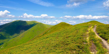 mountain ridge rolling in to the distance. wonderful sunny weather with clouds on the sky. explore carpathian mountains concept Stock Photo