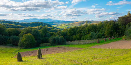autumnal rural landscape in mountains. wonderful transcarpathian countryside scenery on a bright afternoon. clouds above the distant ridge with high peak. fields by the forest on rolling hills
