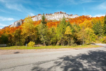 road winding through mountainous landscape. sunny nature scenery in autumn. Pietrele Negre, Apuseni Natural Park,  Bihor country, Romania