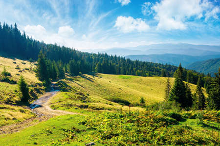 sunny summer landscape of carpathian mountains. forest and meadows on the hills rolling in to the distant valley. ridge beneath a sky with dynamic cloud formations Stock Photo