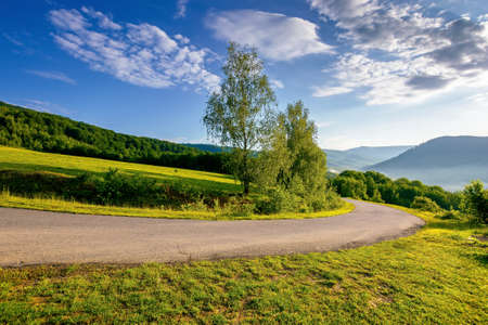 rural road down the hill. beautiful travel background. sunny morning weather in mountains. trees along the path