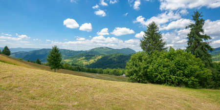 hay field in mountains. wonderful rural landscape. sunny summer day. clouds on the sky Stock Photo