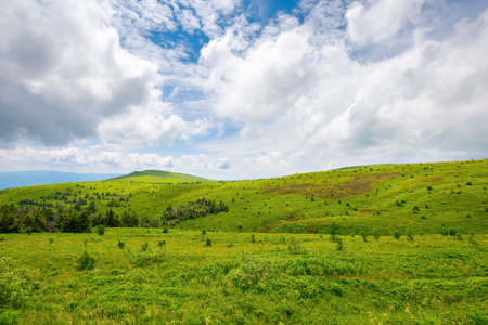 hills and meadows on the mountain plateau. wonderful green summer landscape. clouds on the sky, calm weather
