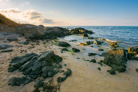 sea beach in the morning. boulders on the sandy shore washed by calm water. few clouds on the bright blue sky