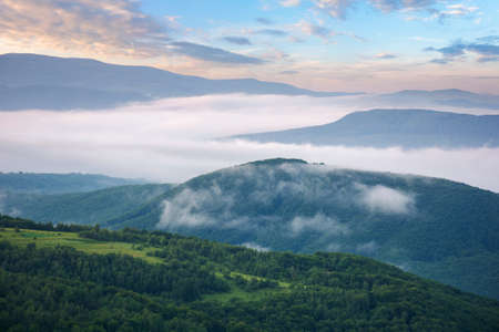 rural landscape in the morning. mist in the distant valley. trees and fields on the hill in morning light Stock Photo
