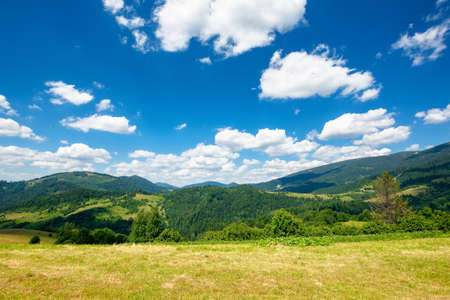 rural field in mountains. beautiful nature landscape. sunny summer day. clouds on the sky. travel back country concept