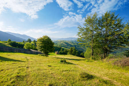 mountainous rural landscape. trees on hills and grassy fields rolling in to the distant ridge beneath a bright sky with clouds. beautiful summer scenery in morning light Stock Photo