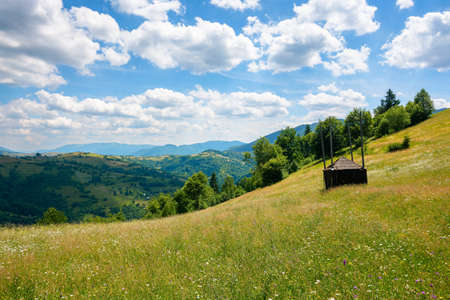 grassy pasture on the hill in summer. empty hay shed on the field. carpathian rural landscape in mountains on a sunny day. sky with clouds above the distant ridge