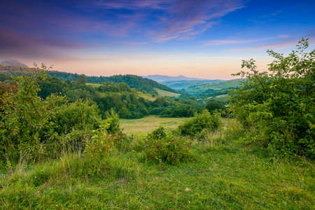 carpathian mountain countryside at sunrise. beautiful rural landscape in summertime with forested hills and grassy pastures in morning light. high peak in the distance