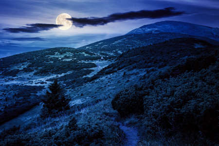 trail uphill the alpine meadow to the distant summit at night. beautiful mountain landscape in summertime in full moon light. clouds on the sky. travel countryside concept