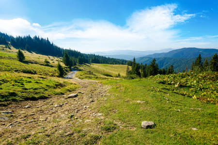 countryside road through forested hills and meadows. summer mountain landscape on a bright sunny morning. clouds on the blue sky