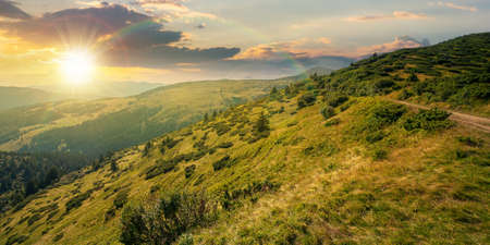 carpathian mountain landscape at sunset. beatiful scenery with green rolling hills in evening light beneath a dramatic sky with clouds in summer. explore backcountry concept Stock Photo