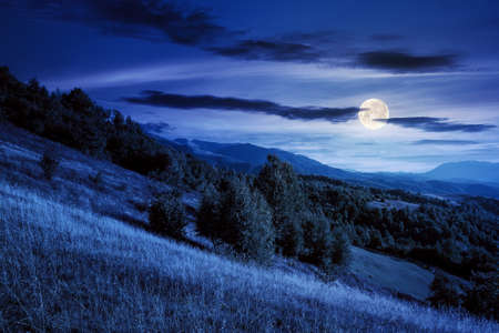 rural landscape at night. beautiful countryside scenery of carpathian mountains in full moon light. trees, fields and meadows on the hills. september sky with fluffy clouds Stock Photo